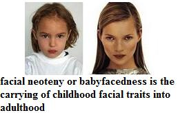facial neoteny