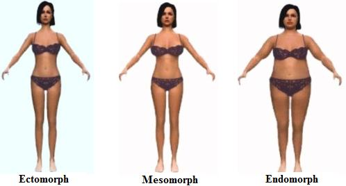 Women Body Shapes. Types+of+women+body+shapes